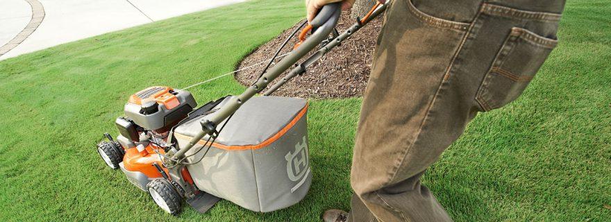 טיפול בדשא